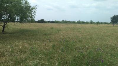 Palo Pinto County Farm & Ranch For Sale