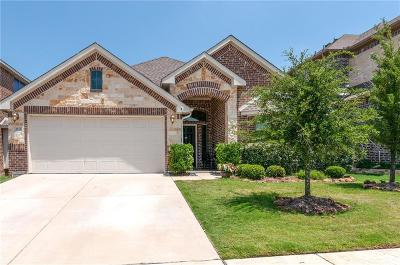 Fort Worth Single Family Home For Sale: 3933 Hollow Lake Road