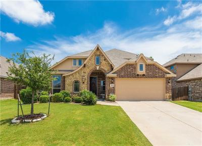 Denton County Single Family Home For Sale: 3417 Tempest Lane