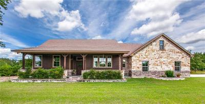 Palo Pinto County Single Family Home For Sale: 215 Sandstone Way
