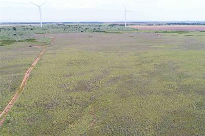 Wilbarger County Farm & Ranch For Sale: 19201 Us Highway 283