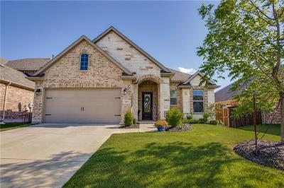 Mckinney Single Family Home For Sale: 1409 Caney Creek Lane