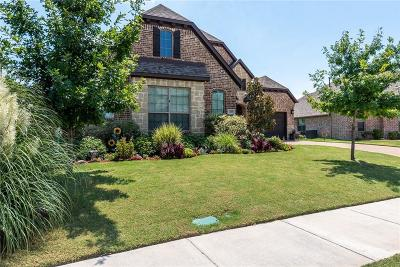 Rockwall Single Family Home For Sale: 1009 Pleasant View Drive
