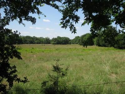 Collin County Farm & Ranch For Sale: 20 Acre County Road 676