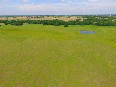 Collin County Farm & Ranch For Sale: 47 Acre County Road 676
