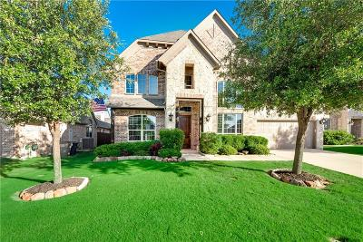 Little Elm Single Family Home For Sale: 2464 Hammock Lake Drive