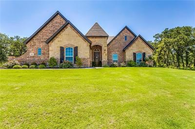 Parker County Single Family Home For Sale: 312 Spring View Court