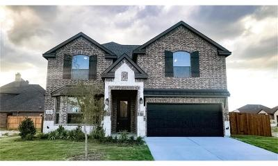 Benbrook Single Family Home For Sale: 6704 Canyon Rock Drive