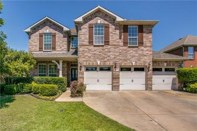 Lewisville Single Family Home For Sale: 1113 Annalea Cove Drive