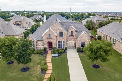 Prosper Single Family Home For Sale: 1021 Caribou Drive