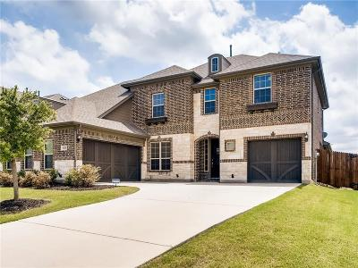 Rowlett Single Family Home For Sale: 6124 Teresa Lane