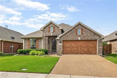 Denton County Single Family Home For Sale: 704 Lighthouse Lane