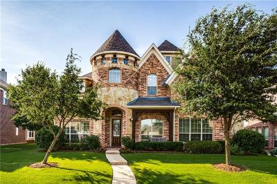 Allen Single Family Home For Sale: 1033 Big Spring Drive