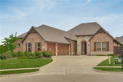 Allen Single Family Home For Sale: 2116 Grassland Court