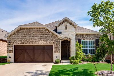 Lewisville Single Family Home For Sale: 206 Copper Canyon Drive