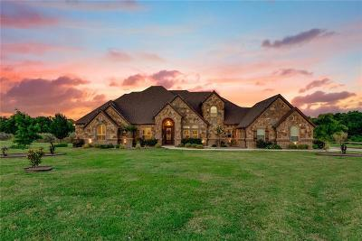 Parker County Single Family Home For Sale: 137 Buchanan Court