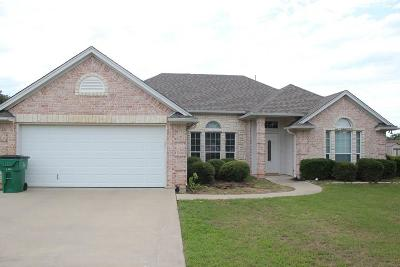 Springtown Single Family Home For Sale: 804 Dove Trail