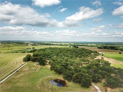 Parker County Single Family Home For Sale: 10815 Tango Road
