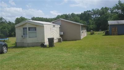 Springtown Single Family Home For Sale: 6501 W Highway 199