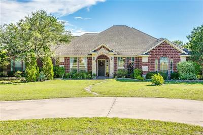 Parker County Single Family Home For Sale: 113 Rim Rock Road