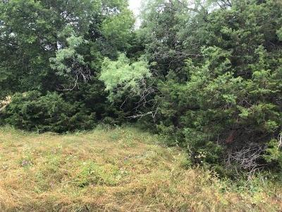 Residential Lots & Land For Sale: 8118 High Mesa Drive