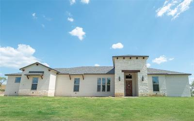 Parker County Single Family Home For Sale: 124 Overlook Drive