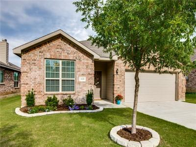Denton Single Family Home For Sale: 3420 Oceanview Drive