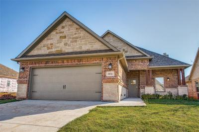 Denison Single Family Home For Sale: 3852 Iron Ore Drive