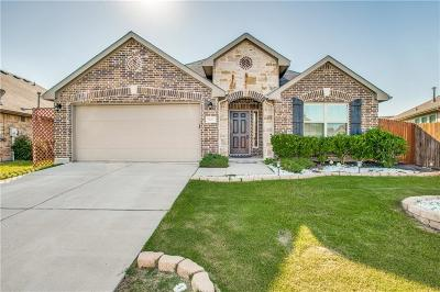 Little Elm Single Family Home For Sale: 800 Goldenmist Drive