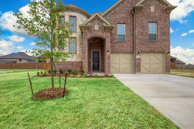 Grand Prairie Single Family Home For Sale: 2712 Eiffel Drive