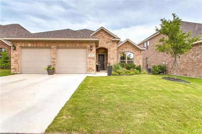 Fort Worth Single Family Home For Sale: 9620 Rosina Trail