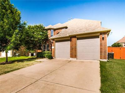 Grand Prairie Single Family Home For Sale: 2736 Meadow Lake Drive