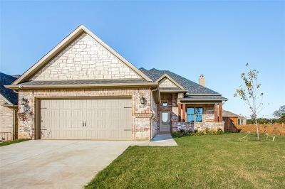 Grayson County Single Family Home For Sale: 3841 Iron Ore Drive