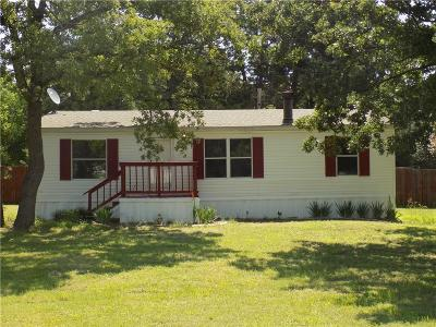Springtown Single Family Home For Sale: 140 Lowrey Circle