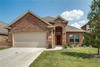 Frisco Single Family Home For Sale: 11205 Amistad Drive