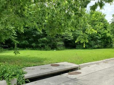 Collin County Residential Lots & Land For Sale: 702 Fenet Street E