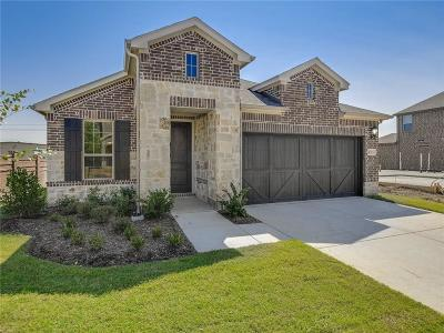 Denton County Single Family Home For Sale: 4716 Vallaresso Way