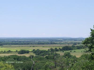 Comanche County Farm & Ranch For Sale: Tbd County Rd 343