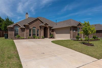 Dallas County, Denton County, Collin County, Cooke County, Grayson County, Jack County, Johnson County, Palo Pinto County, Parker County, Tarrant County, Wise County Single Family Home For Sale: 4809 Lakeway Drive