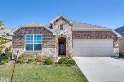 Argyle Single Family Home For Sale: 6601 Roaring Creek