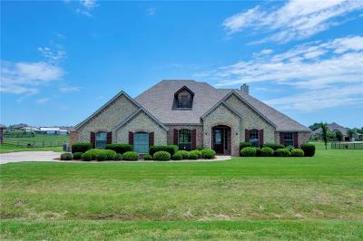 Dallas County, Denton County, Collin County, Cooke County, Grayson County, Jack County, Johnson County, Palo Pinto County, Parker County, Tarrant County, Wise County Single Family Home For Sale: 14208 Lucille Drive