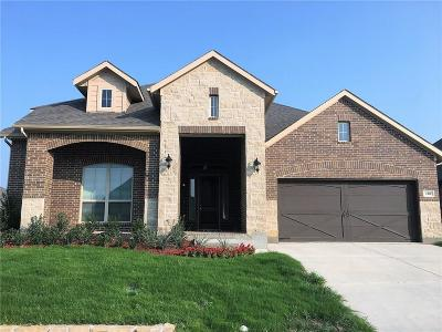 Parker County Single Family Home For Sale: 228 Open Sky Drive