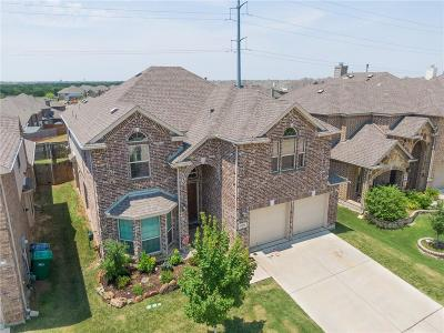 Little Elm Single Family Home For Sale: 14008 Blueberry Hill Drive