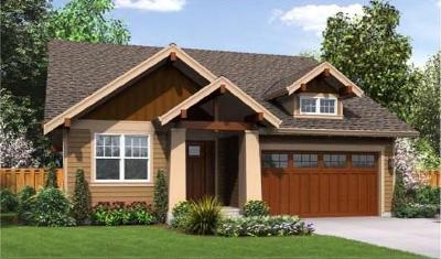 Nevada Single Family Home For Sale: 70 Providence Way