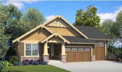 Nevada Single Family Home For Sale: 73 Providence Way