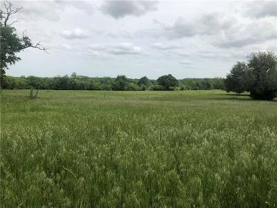 Springtown Residential Lots & Land For Sale: 1421 J E Woody Rd