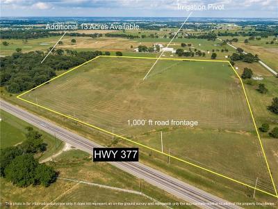 Aubrey Farm & Ranch For Sale: 837 Us Highway 377 #B