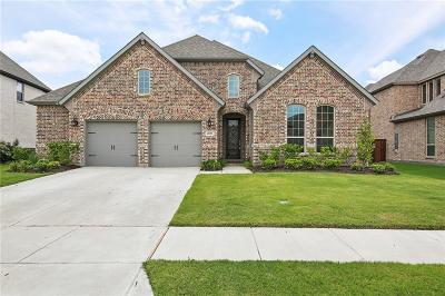 Prosper Single Family Home For Sale: 4031 Blue Sage Drive