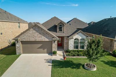 Little Elm Single Family Home For Sale: 1105 Lake Woodland Drive