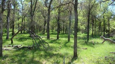 Farm & Ranch For Sale: Tbd Mx Ranch Road